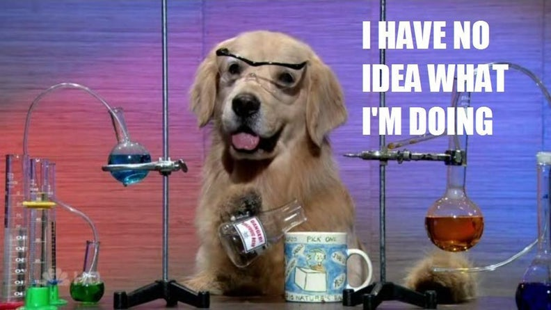 A picture of a dog behing chemistry equipment with text 'I have no idea what I'm doing'